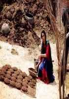 Dirty Politics Mallika Sherawat Photo Stills