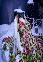 Kick Jacqueline Fernandez Salman Khan Snow Pics Stills
