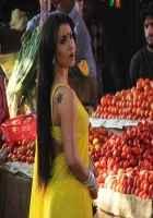 Mickey Virus Hot Elli Avram In Yellow Saree Stills