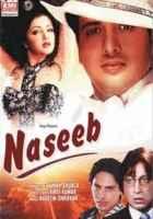 Naseeb Photos