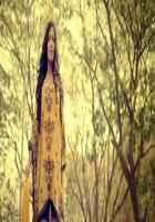 Nasha Poonam Pandey in Forest Stills