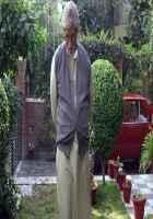 Piku Amitabh Bachchan HD Wallpaper Stills