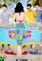 Shaukeen Kaminay Photos