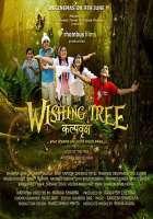 The Wishing Tree Photos