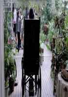Wazir Amitabh Bachchan Wheelchair Pics Stills