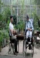 Wazir Farhan Akhtar Amitabh Bachchan Palying Chess Stills