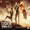 Tiger Zinda Hai Image Poster