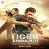 Tiger Zinda Hai Katrina Kaif Salman Khan Wallpaper Poster