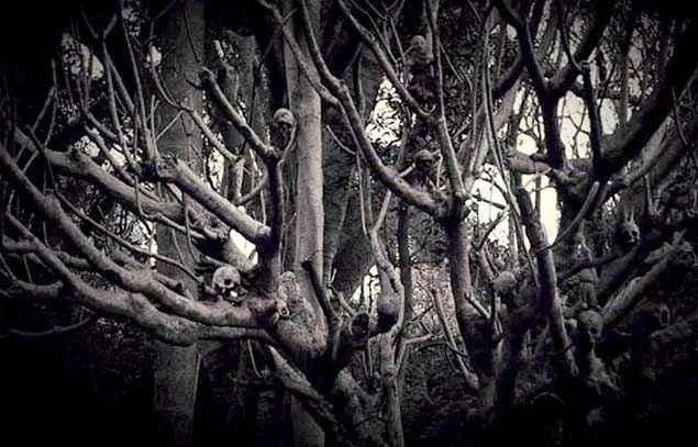 6-5=2 Horror Tree Stills