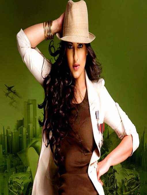 Bullett Raja Star Cast Sonakshi Sinha