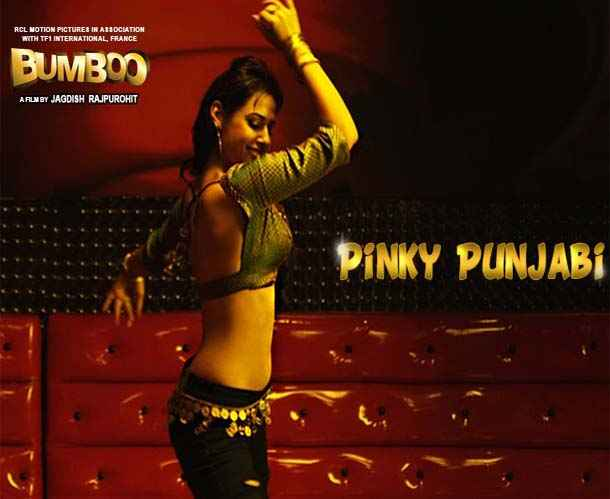 Bumboo Item Girl Pinky Punjabi  Stills