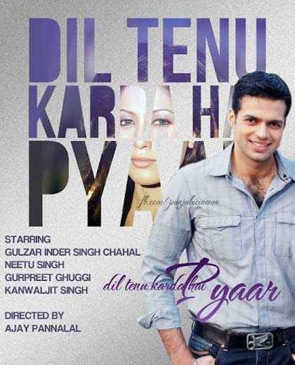 Dil Tainu Karda Hai Pyar Pics Poster