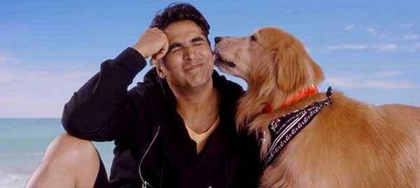 Its Entertainment Akshay Kumar And Dog Wallpaper Stills