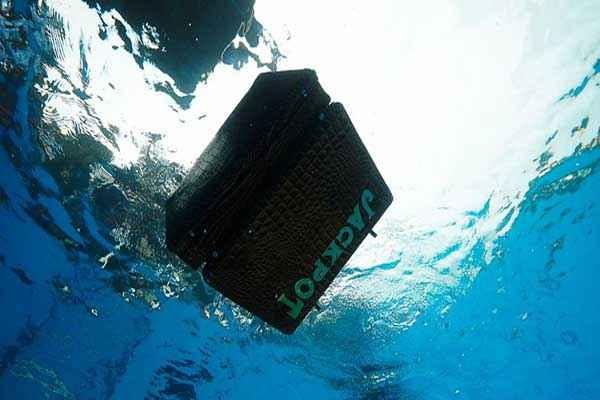 Jackpot 2013 Box In Water Stills
