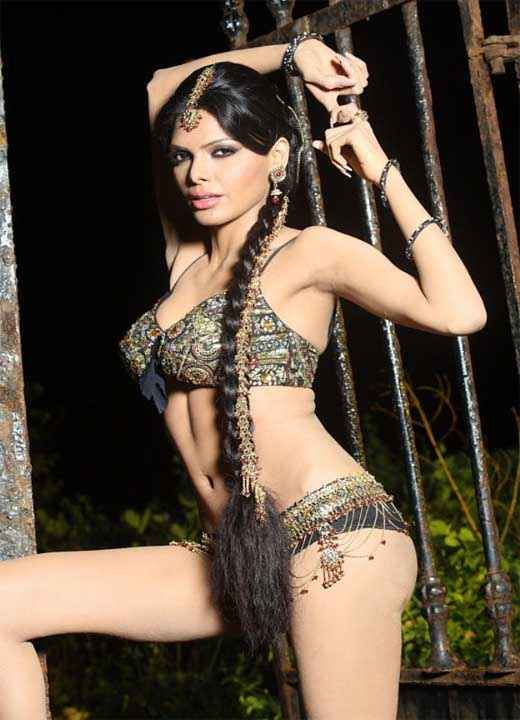 Kamasutra 3D Sherlyn Chopra in Sexy Mood Stills