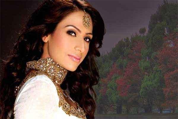 Krrish 3 Star Cast Shaurya Chauhan