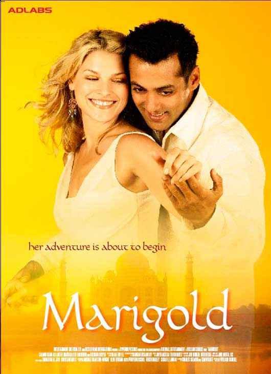 Marigold HD Wallpaper Poster