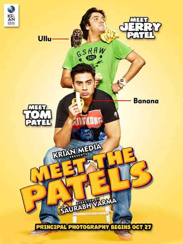Meet The Patels Image Poster