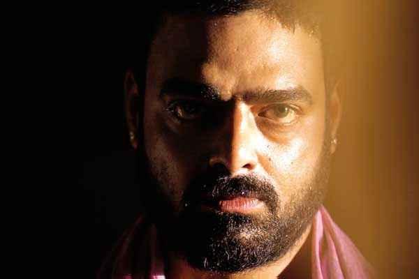 Ram Leela Star Cast Abhimanyu Singh