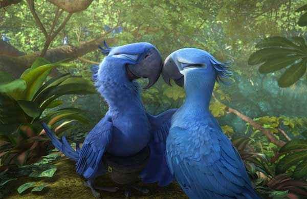Rio 2 Birds Loving Stills