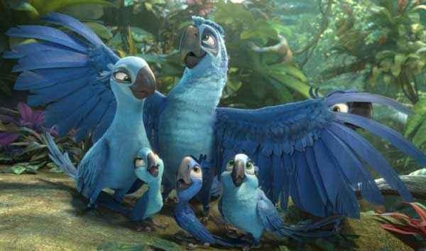 Rio 2 Birds Stills
