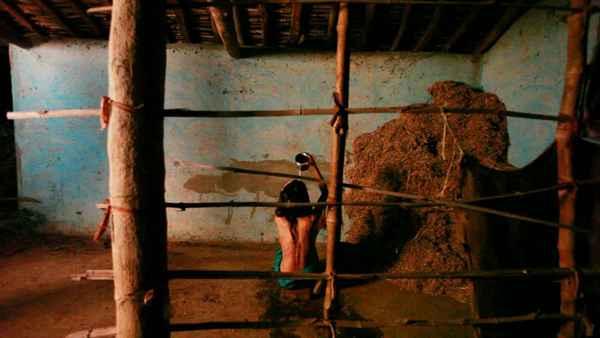 The Dark Secrets Of Tonhi Natasha Sikka Bath Scene Stills
