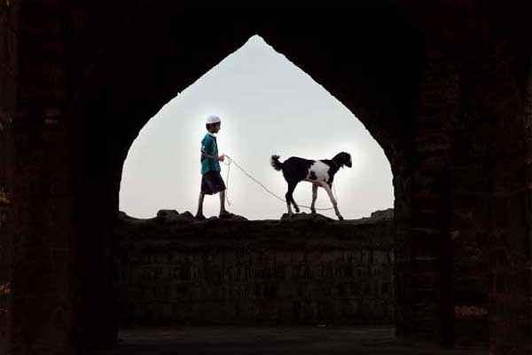 Yeh Hai Bakrapur Pics Stills